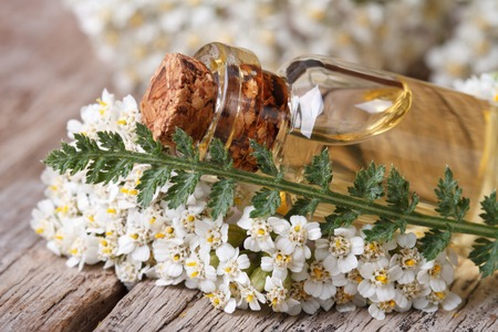 milfoil: extract of yarrow in a bottle with flowers on the table.