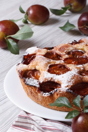 Delicious homemade cake with plums close-up on the table vertical  photo