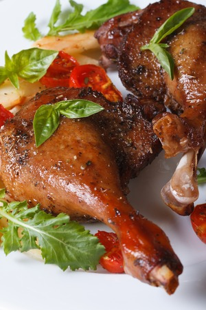 roasted duck legs with tomato and arugula white plate macro vertical  photo