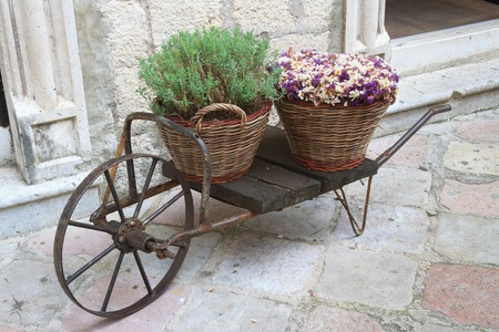 Decorative cart with baskets and flowers on the street close up photo