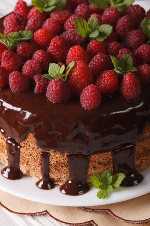 chocolate dessert: Chocolate raspberry cake with fresh berries close up on a white plate. Vertical Stock Photo
