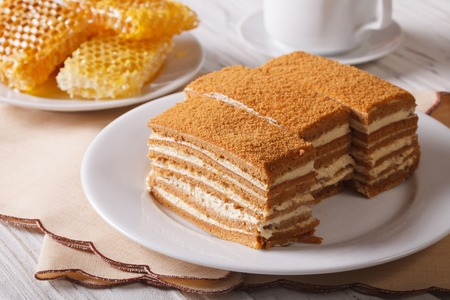 Beautiful close-up of honey cake on a plate and honeycomb