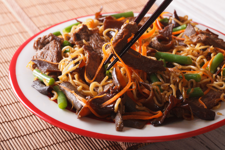 lo mein: Lo mein Chinese noodles with beef and black fungus macro on a plate. Horizontal