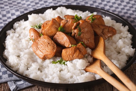 philippine: Philippine cuisine: Adobo with rice close-up on a plate. Horizontal