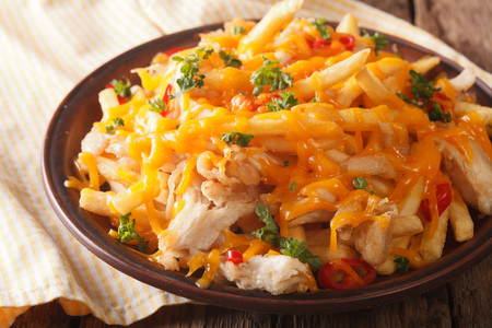 皿の上にチェダー チーズとチキン肉クローズ アップとフライド ポテト。水平方向