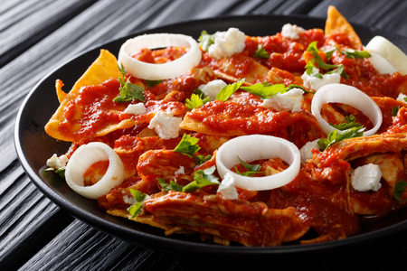 chilaquiles Mexican nachos with tomato salsa, chicken and cheese close-up on a plate. horizontal Imagens