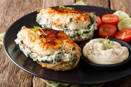 焼き鶏ササミを詰めたチーズとほうれん草の皿にソースのクローズ アップ。水平方向 写真素材