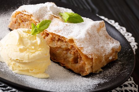 Apple strudel sprinkled with powdered sugar with ice cream and mint closeup on a plate. horizontal