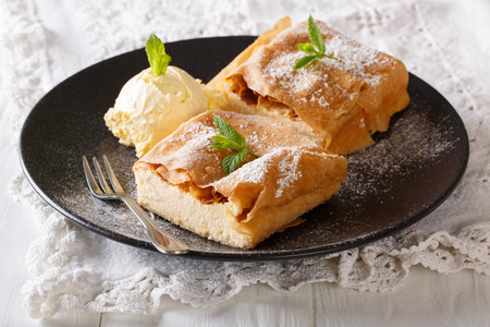 Cottage cheese strudel with vanilla ice cream close-up on a plate. horizontal