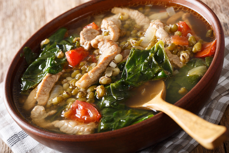 Filipino soup of beans mung with pork closeup in a bowl on the table. Horizontal