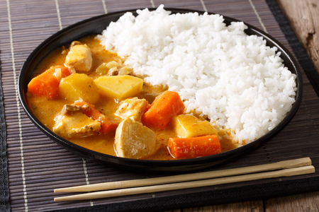 Traditional Japanese food: curry and rice close-up on a plate. horizontal