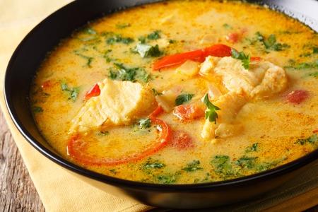 Ragoût de poisson brésilien (Moqueca Baiana) avec des légumes et du lait de coco en gros plan sur une assiette sur une table. Horizontal