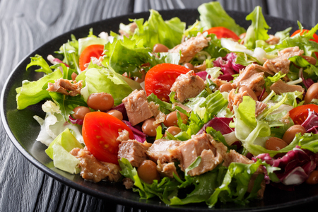 Healthy and delicious food: salad of tuna fish, borlotti beans, tomatoes, mix of lettuce close-up on a plate on the table. horizontal Archivio Fotografico