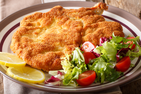 Delicious veal cutlet Milanese with lemon and fresh vegetable salad close-up on a plate. horizontal