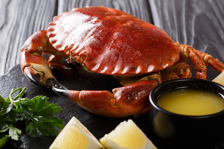 cooked edible brown crab served with melted butter, lemon and parsley close-up on a black background. horizontal 스톡 콘텐츠