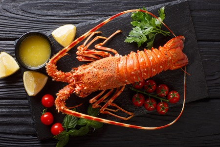 Luxurious boiled spiny lobster surrounded by fresh tomatoes, lemon, herbs and melted butter close-up on a black stone. horizontal top view from above