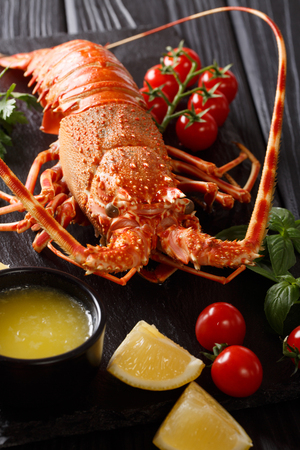 Delicious food: boiled spiny or rocky lobster with tomato, lemon and melted butter close-up on a black board. vertical