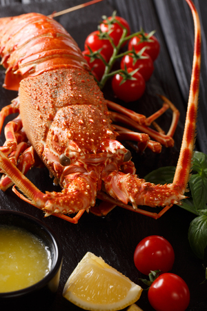 Boiled spiny lobster with tomato, lemon and melted butter macro on a black background. vertical