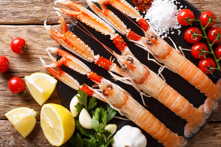 beautiful set of fresh raw langoustine, scampi with seasonal vegetables and herbs closeup on a board on a wooden table. horizontal top view from above