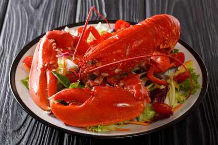 Seafood background. red lobster with fresh vegetable salad on a plate close-up on a black table. horizontal