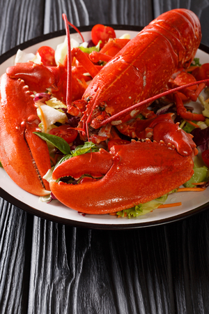 Delicious healthy food: boiled lobster with fresh vegetable salad on a plate close-up on a table. vertical.