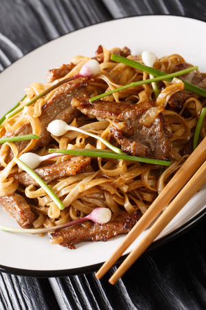 Beef Chow Fun Noodles (Pan-Fried Ho Fun) Cantonese dish closeup on the plate on the wooden table. Vertical
