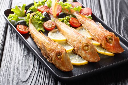 Mediterranean roasted sea fish gurnard with fresh vegetable salad and lemon close-up on a plate on the table. horizontal