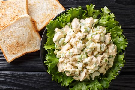 Southern chicken salad with celery, eggs and green onions with toast close-up on a plate on the table. Horizontal top view from above  Stok Fotoğraf
