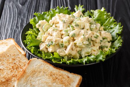 Traditional american chicken salad served with toast closeup on a plate on the table. horizontal
