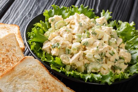 Fresh chicken salad with celery, eggs with mayonnaise dressing closeup on a plate on the table. horizontal