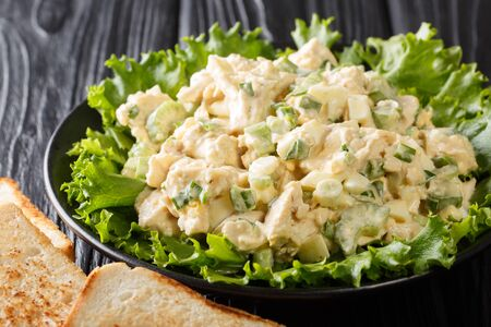 Organic chicken salad with celery, eggs seasoned with sauce closeup on a plate on the table. horizontal