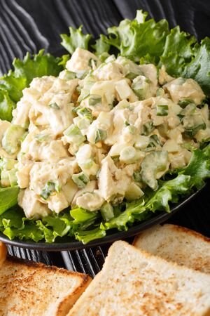 Delicious chicken salad with celery, eggs and onions served with toast close-up on a plate on the table. vertical