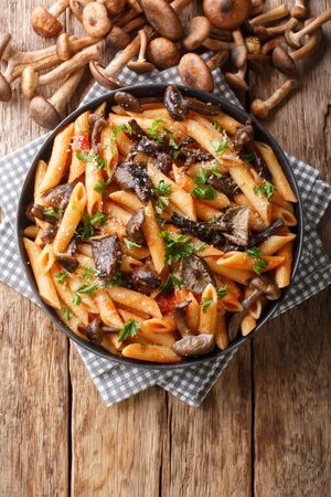 Delicious penne pasta with autumn honey fungus and tomato sauce close-up in a plate on the table. Vertical top view from above