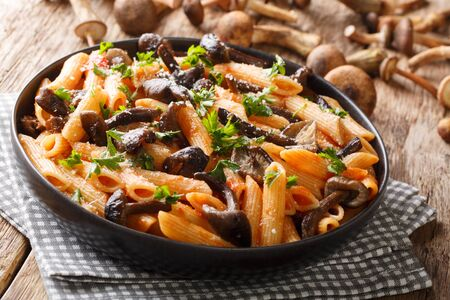 Rustic pasta with roasted honey mushrooms, parmesan and tomato sauce close-up in a plate on the table. horizontal