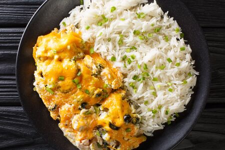Olivia casserole of grilled chicken with olives and onions in a creamy cheese sauce served with rice close-up on a plate on the table. horizontal top view from above  Zdjęcie Seryjne