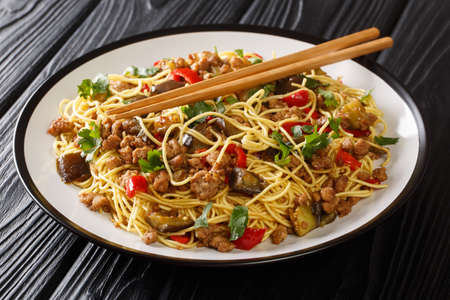 Chinese fried eggplant with minced meat, egg noodles, garlic and herbs close-up in a plate on the table. Banco de Imagens