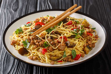 Egg noodles with fried eggplant and minced pork close-up in a plate on the table. horizontal Banco de Imagens