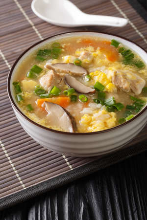 Japanese Zosui rice soup with egg, mushrooms, vegetables and chicken meat close-up in a bowl on the table. vertical Banco de Imagens