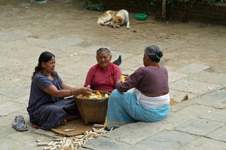 Kathmandu, Nepal, october 11, 2010: Women corn husks on the road Stock Photo - 10105033