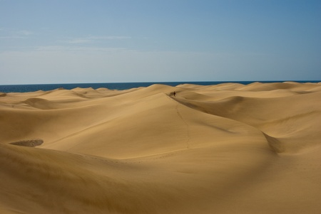 Sand dunes with sea on the horizont photo