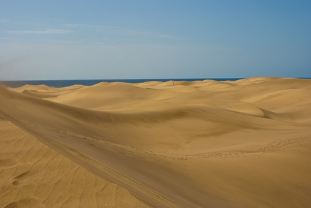 Desert sand dunes with sea on the horizont
