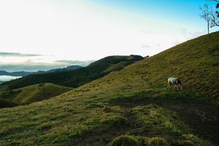 Visconde de Maua landscape