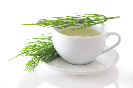 Heermoes Heermoes thee geïsoleerd op witte achtergrond