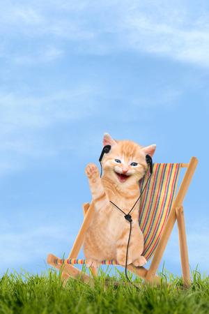 Cat chaton assis dans une chaise de pont Transat avec un casque