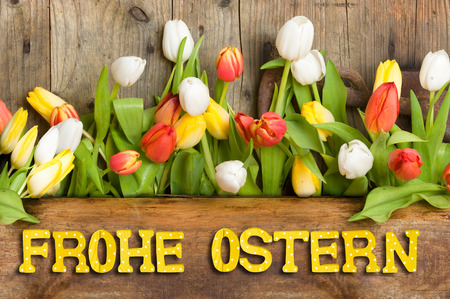 Tulips against wooden background with Text Happy Easter Zdjęcie Seryjne