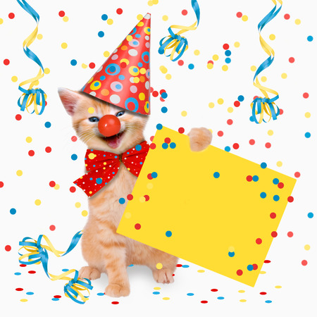 celebra: Fiesta de Carnaval, gatos, resaca, dos gatos celebrar el Carnaval
