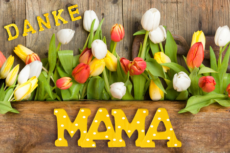 Thank you Mom, written with wooden letters on wood background with tulips