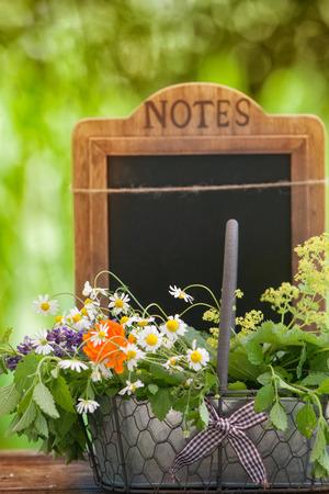 medicina natural: Hierbas medicinales, curativas plantas en una cesta Foto de archivo