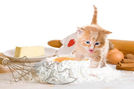 Baking of Christmas cookies with cat Zdjęcie Seryjne - 44161753