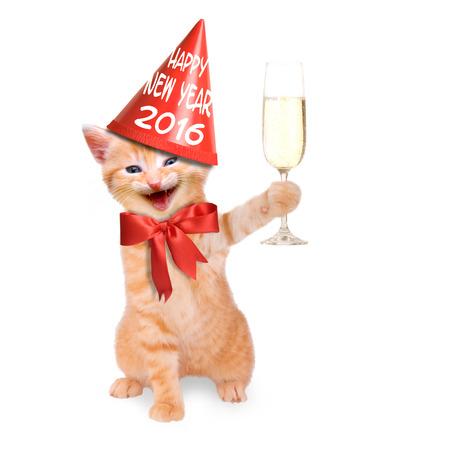 nevetve macska pohár pezsgőt és fél kalap Boldog Új Évet 2016 Stock fotó